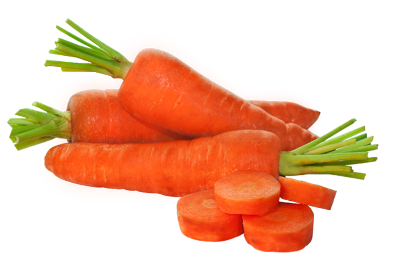 zanahoria - Provegano