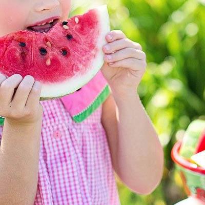 Categoría Alimentación vegana para niños - Provegano