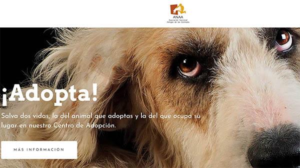 Asociacion Anaa Amigos de los Animales