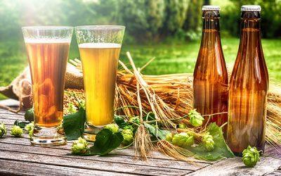 🌱 Cervezas veganas – Toda la información y las mejores marcas de Cervezas para veganos